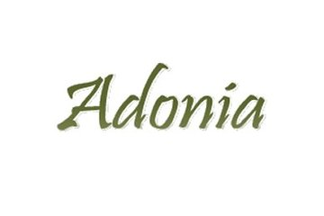 Adonia Casual Greek Family Dining