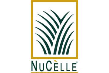 Nucelle Inc