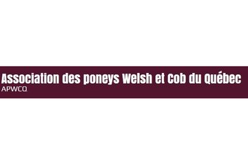 Association des poneys Welsh et Cob du Quebec