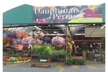 Dauphinais Perras D
