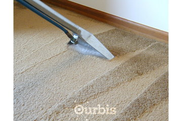 Trusty Building Maintenance Ltd.  in Surrey: carpet cleaning surrey bc