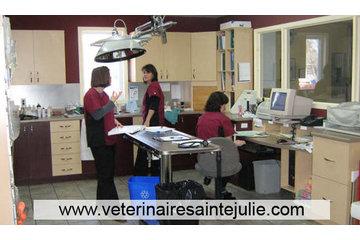 Clinique Vétérinaire des Hauts-Bois in Sainte-Julie: Examen