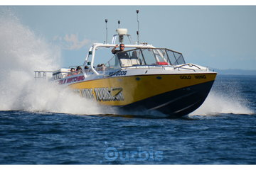 Eagle Wing Whale Watching Tours Ltd in Victoria: Goldwing cruising