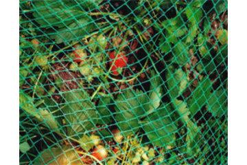 Dubois Agrinovation in Saint-Rémi: bird netting