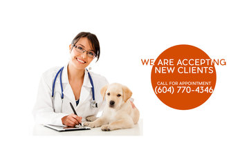 North Vancouver Pet Hospital