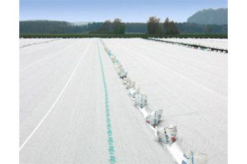 Dubois Agrinovation in Saint-Rémi: agryl novagryl floating row covers