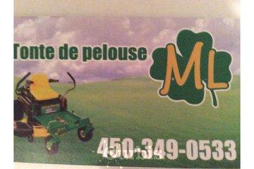 Les tontes de pelouse M.L.