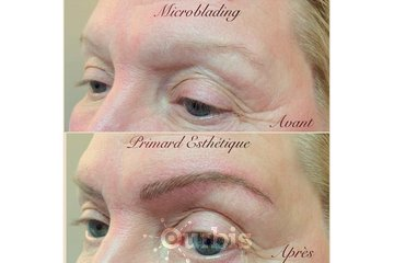 Microblading Montreal à Montreal: Microblading Montreal promotion 250$