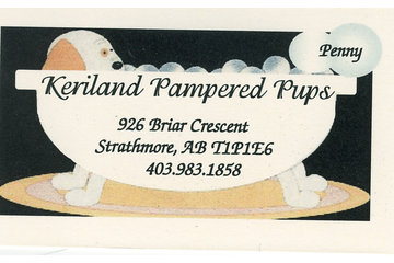 Keriland Pampered Pups
