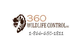 360 Wildlife | Wildlife Removal Toronto