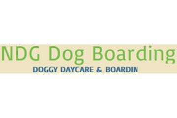 NDG Dog Boarding and Sitting