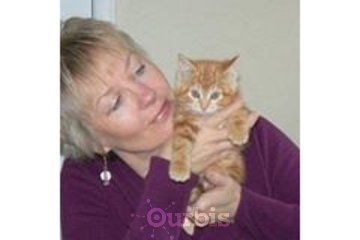 Reiki for People and Pets Cobourg Ontario