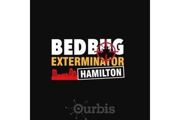 Bed Bug Exterminator Hamilton