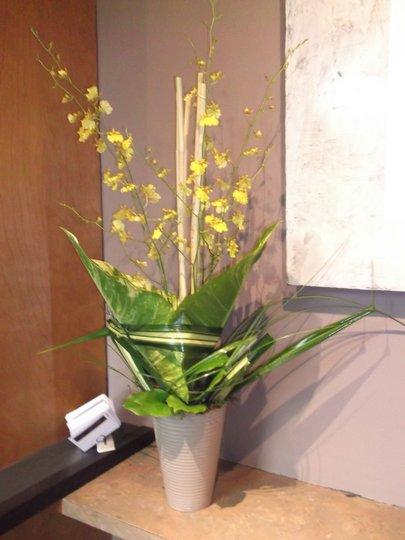 Zen le pouvoir des fleurs montr al qc ourbis for Bouquet de fleurs quebec