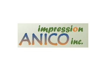 Impression Anico Inc