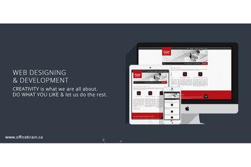 Office Brain in Innisfil: Website Designing & Development