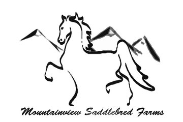 Foothills Custom Promotionals in High River: Company Logo