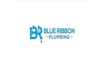 Blue Ribbon Plumbing in Abbotsford