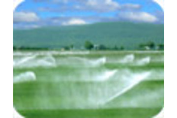 Dubois Agrinovation in Saint-Rémi: irrigation equipment