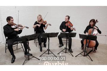 Wellington Music
