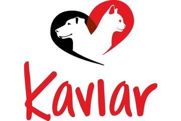 Kaviar International Inc à Saint-Jean-sur-Richelieu: Un nom de Prestige pour une nourriture de Qualité!