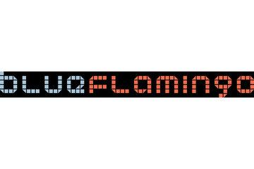 Blueflamingo in toronto: Blueflamingo Toronto Web Design