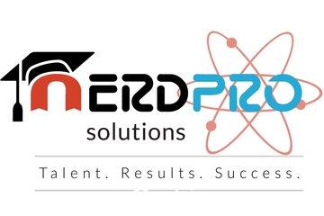 NerdPro Writing Solutions