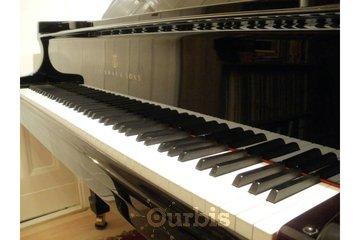 Klavier Lernen - Pianolla Muse