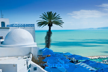Bestway Tours & Safaris in Burnaby: Cultural tour of Tunisia