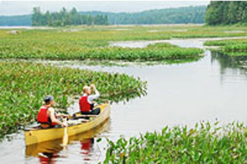 Algonquin Outfitters - Canoe Trips in Dwight: Wilderness Canoe Trips in Algonquin Park