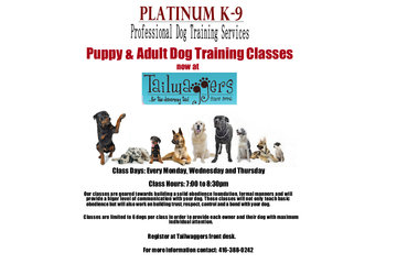 Platinum K-9 Professional Canine Training Services