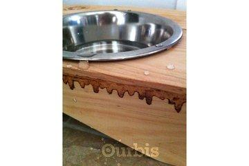 Les créations de Coccinelle à Longueuil: Porte gamelles d'eau ou autre
