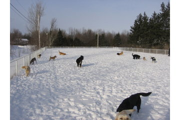 Country Meadows Kennel