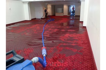 Flood Doctor Inc. in toronto: carpet cleaning