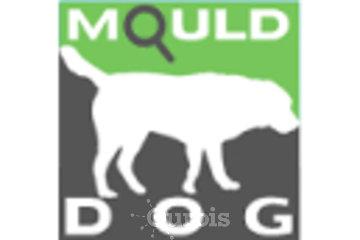 Mould Dog