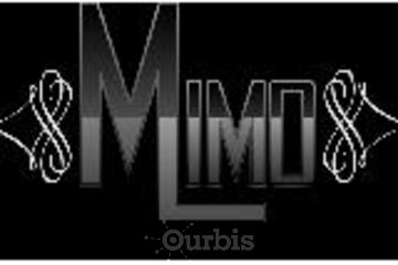 Mimo Limousine Car Service & Private Chauffeurs