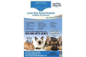 Lorne Park Animal Hospital