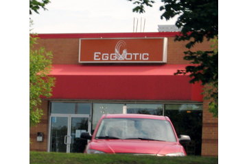 Restaurant Eggxotic