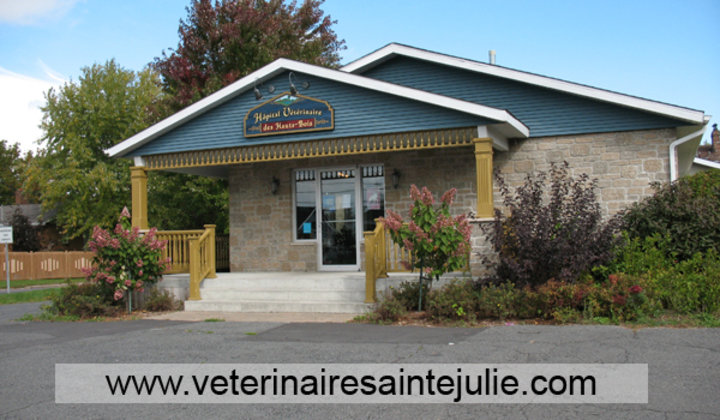 sainte julie chat Hotels in sainte-julie book reservations for sainte-julie hotels, motels,  chat live or call 1-800-454-3743 any time for help booking your hotels in sainte-julie.