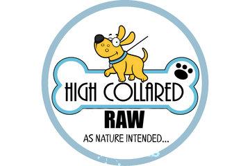 High Collared Raw