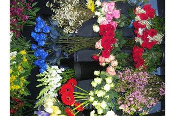 Fleuriste Lavaltrie in Lavaltrie