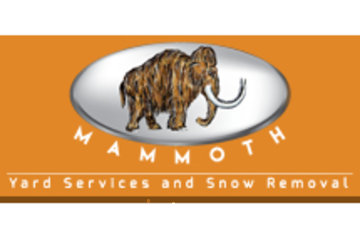 Mammoth Yard Services Ltd.