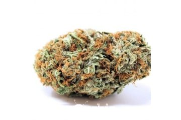 Low Price Bud in VANCOUVER