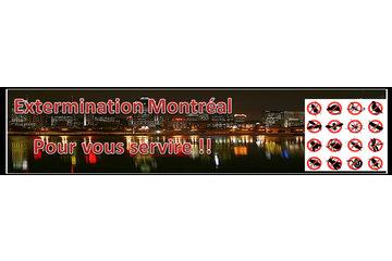 Exterminateur Montréal à Montréal: Exteminateur Montréal