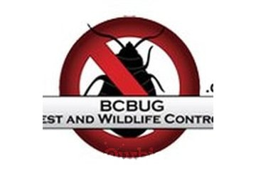 Canada Bed Bug Vancouver