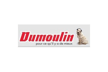 Dumoulin Electronique