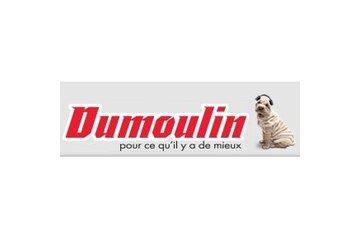 Dumoulin Electronique