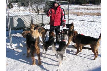 Auberge Canine de la Petite-Nation in Saint-Sixte: Éducateur Canin diplômé sur place !
