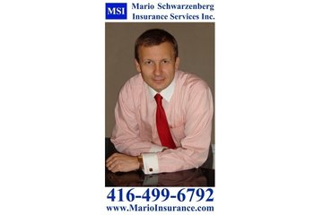 MSI - Mario Schwarzenberg Insurance Services Inc.