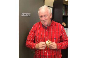 Oakville Chiropractic Centre in Oakville: Dr. Brian Huggins